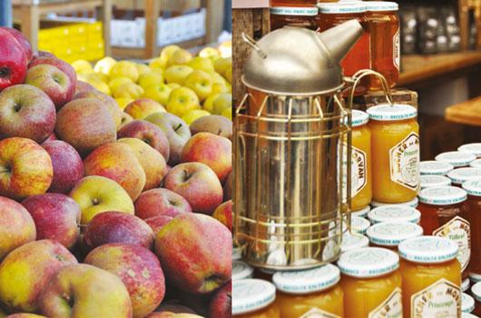 Gally - épicerie pomme