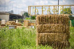 Une ferme urbaine le long du canal de l'Ourcq !